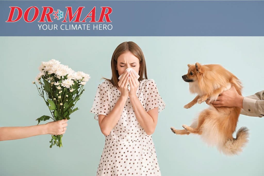 Reduce the effects of seasonal allergies by improving your indoor air quality.